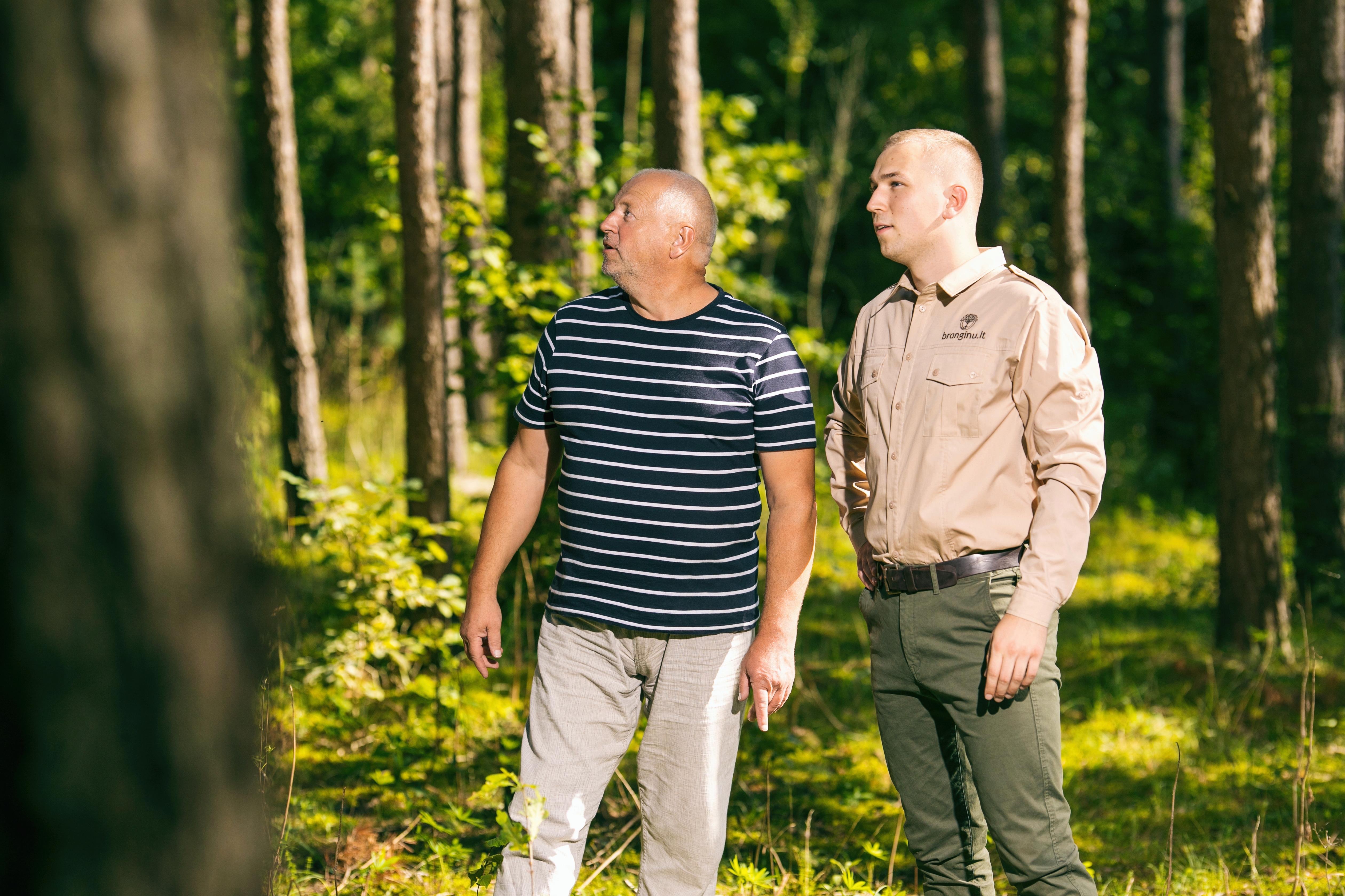 Ką daryti su paveldėtu mišku?