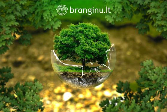 Šiandien Pasaulinė Žemės diena