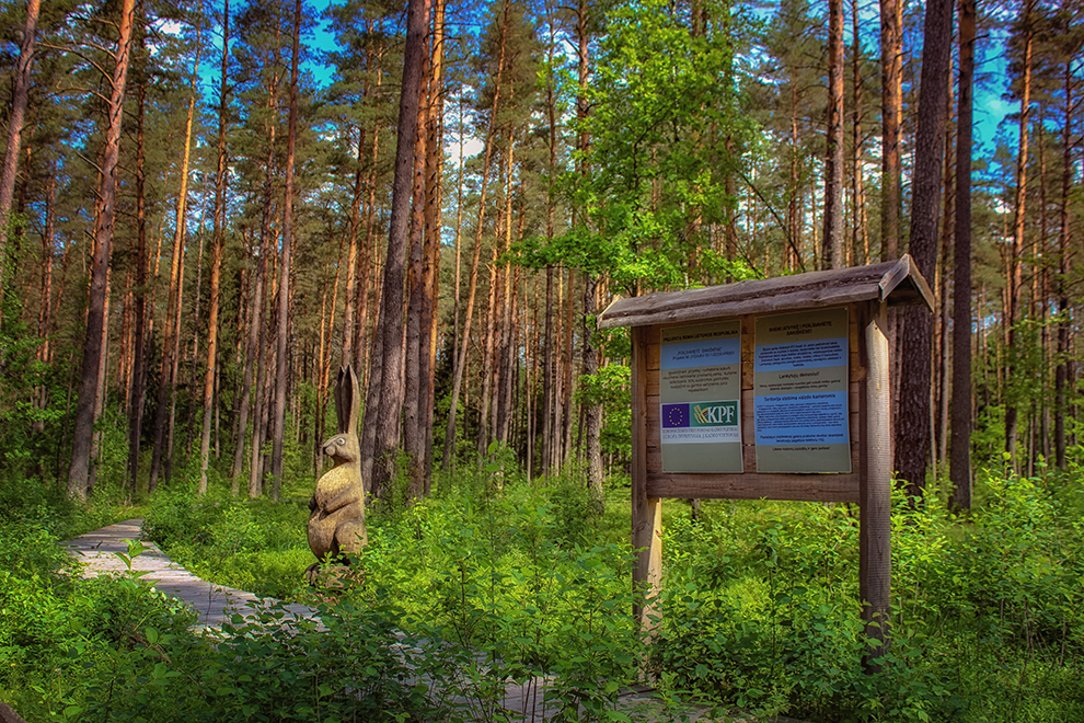 Sakiškės - daugiausiai miško takų Vilniaus apylinkėse turintis kaimas