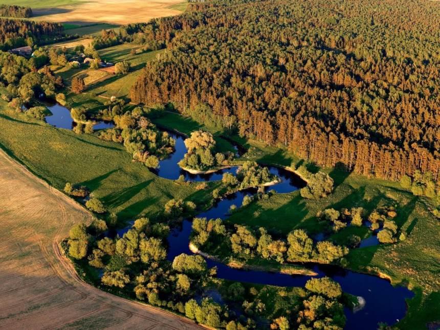 Perkame mišką - gamtos kampelį savoje žemėje