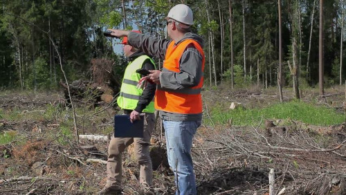 Svarbūs klausimai ir atsakymai apie miškotvarkos projektus