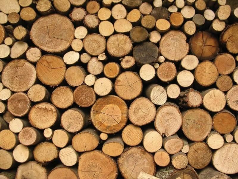 Priminimas miško savininkams